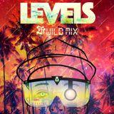 J.J. Wild - Levels Mix 2016