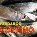 No 2 FANDANGO COSTEÑO / RADIO MIXANTEÑA