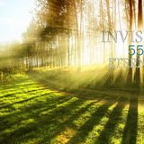 INVISIBLE-ETERNITY 55