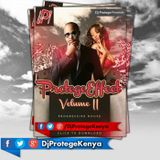 The Protege Effect Volume 2