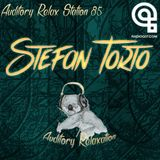Auditory Relax Station #85: Stefan Torto