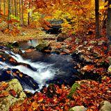 Cortezz - Autumn Deep mix 2013