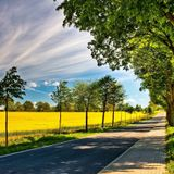 """""""The last road of the summer» Fartlek 60mn"""