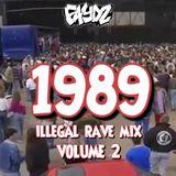 1989 Illegal Rave Mix (Vol 2) DJ Faydz