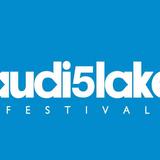 Audiolake festiwal 2014 (Dj Contest)