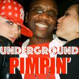 DEEP SOULFUL Underground PIMPIN' (House Head Honey's Pt. 2)  Deep Sleeze Underground House Movement❗