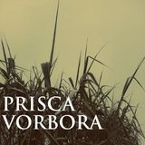 Türp - Prisca Vorbora