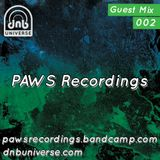 Guest Mix 002 - PAWS Recordings