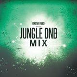 Jungle DnB Mix