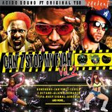 CAN´T STOP MY FYAH Vol 2 (The Mixtape 2014) - ORIGINAL T SB & ACIDOSOUND