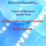 Bluetown Electronica Friends-Fest live show 20-10-13