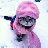 Cold . . . 02.10.2015