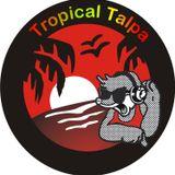 Tropical Talpa - Intervista a Fabiana Paladino