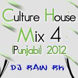 DJ RAW RK_Culture House Mix 4 (Punjabi) 2012