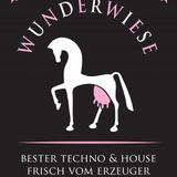 Wunderwiese - B2B mit DJ Nok!a (ARM-Wiese, Kassel,18.01.2017)