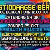 Analog Effect - Kunstvierdaagse - Amarahoeve - Bergen - 10-2015