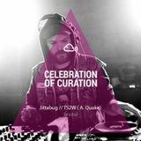 Celebration of Curation 2013 #Bristol: TS2W
