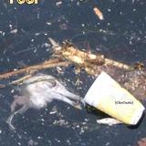"""ChicOnAir presents """"The Pool Of Tears_Part II"""" (Alice in Wonderland series)_04.12.13"""