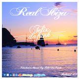 Real Ibiza #3 by Felix Da Funk