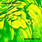 treibgood collective 23 - brazilectro 03
