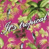It's tropical vol.3