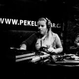 Unbekannte_Teilnehmerin@Chicago_House_Night_Pekelnej_Bar_Prague_22_02_13