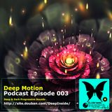 Deep Motion Podcast 003