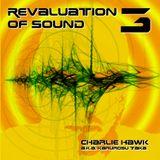 Charlie Hawk Aka Karurosu Taka - Revaluation of Sound 3