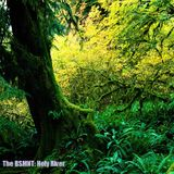 The BSMNT: Holy River