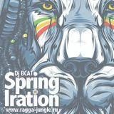 Dj B.CAT-Spring Iration