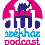 Dub Székház Podcast 071 – Dr. Juzztice