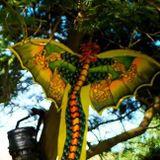 K Christopher Ivan Techmas - disco dragon at Summer Camp Flow