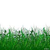 GRÜNE WIESE MIX by Ben-Ten 1.04.2012