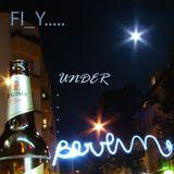 FLY - Under Berlin