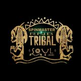 SPINMASTER- Soulful Classics & Tribal Mix