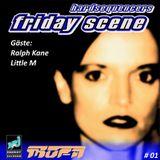 Hardsequencers Friday Scene /// Ralph Kane, Little M /// 29.12.1995