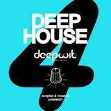Deep House Label Showcase: DeepWit Recordings #4