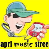 SMS: Sapri Music Street (ultima puntata)