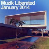 Ian Carey's Muzik Liberated RadioShow January 2014