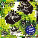 Bloom / DJ PIN (aka pin_oknw)