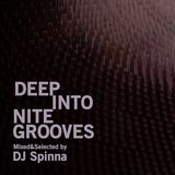 Spinna - Deep Into Nite Grooves Mixed 2013