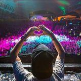 Festival EDM Mix 2017 - Best Electro House & Hardstyle Mix