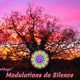 Modulations du Silence 2