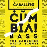 Caballito Sound Sistema + The Gardener Sevilla @Sala Malandar //29/1/2016//