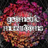 Geometric Mushrooms 9th Dec 2017