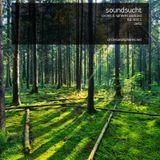 [C&SPL019.1] soundsucht