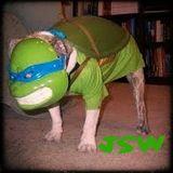 JSW Show 135 (Turtlelly Wired)