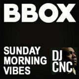Sunday Morning Vibes 1719