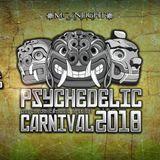 Adren Aline (Trilobite Music) @ Psychedelic Carnival 2018 - La Chacra - Lima - Perú - 30-01.03.2018