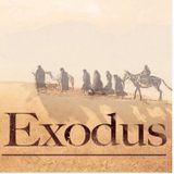 Baya - The Exodus of 2017 /DJ Set/